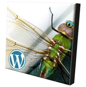 Fly 'pinions was born on wordpress