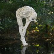 source-image-2